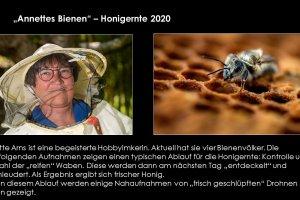 Annettes-Bienen